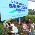 Marigolds Planting at Saint John Airport 2012